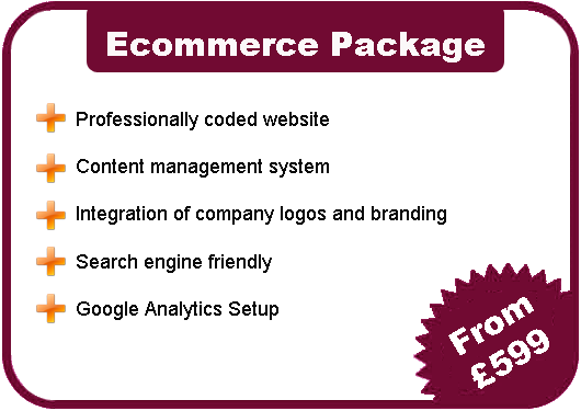 Ecommerce Website Company