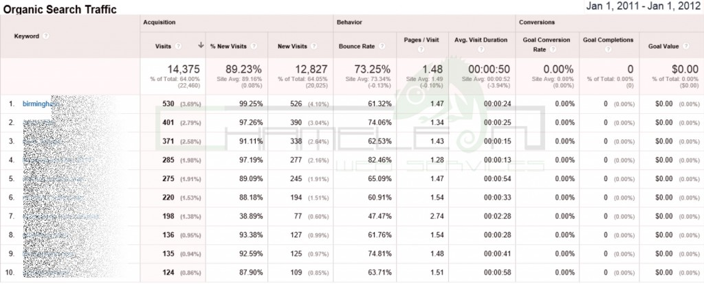 Google Analytics Screen Shot 1