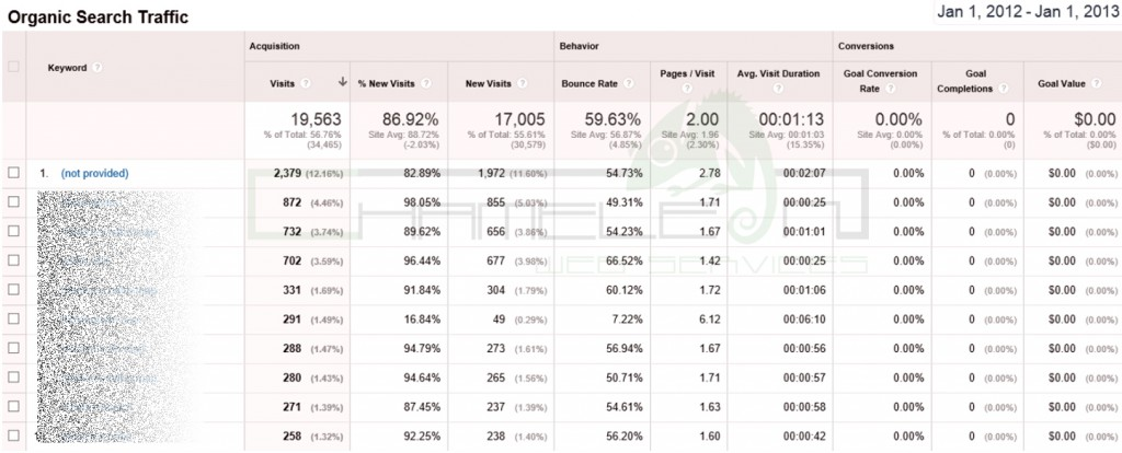 Google Analytics Screen Shot 2