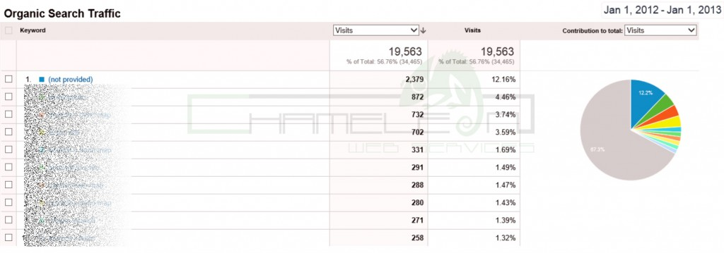 Google Analytics Screen Shot 3