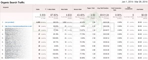 Google Analytics Screen Shot 5