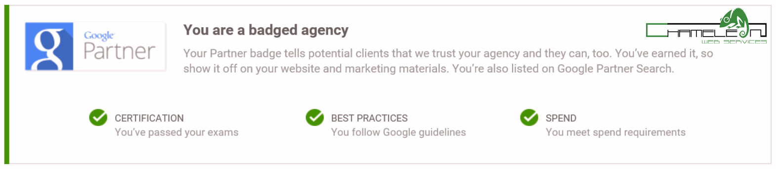 Google Partner Badged Agency