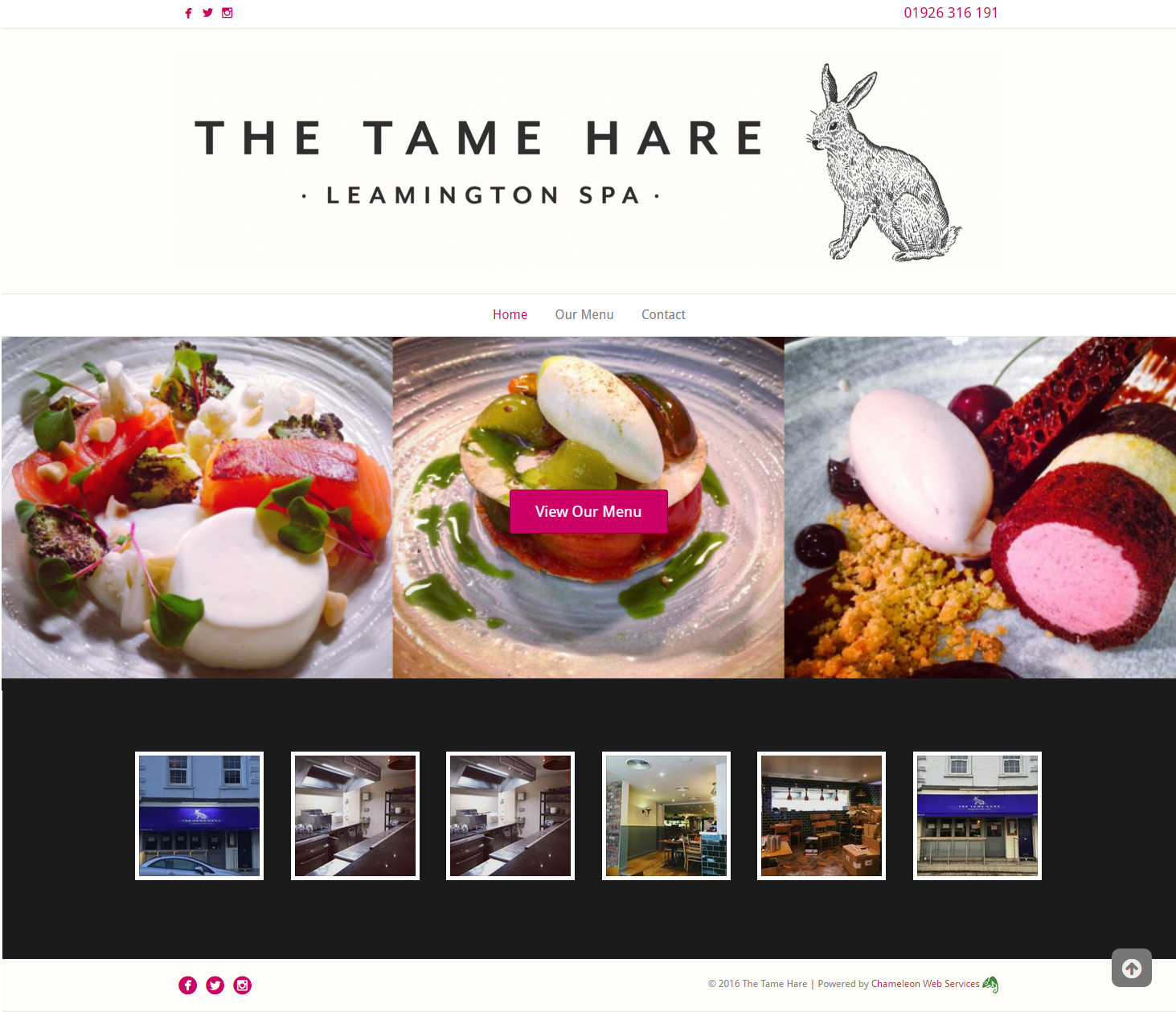 the tame hare
